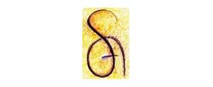 Sociedad Española de Gestión y Calidad (SEGECA)
